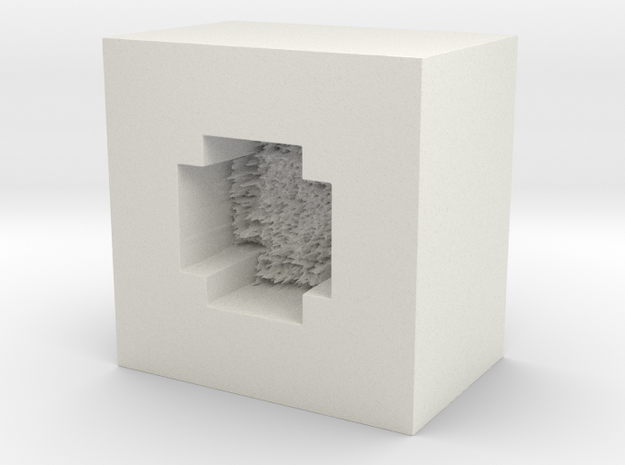 moemold00005 in White Natural Versatile Plastic