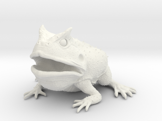 Beelzebufo middle size(color)