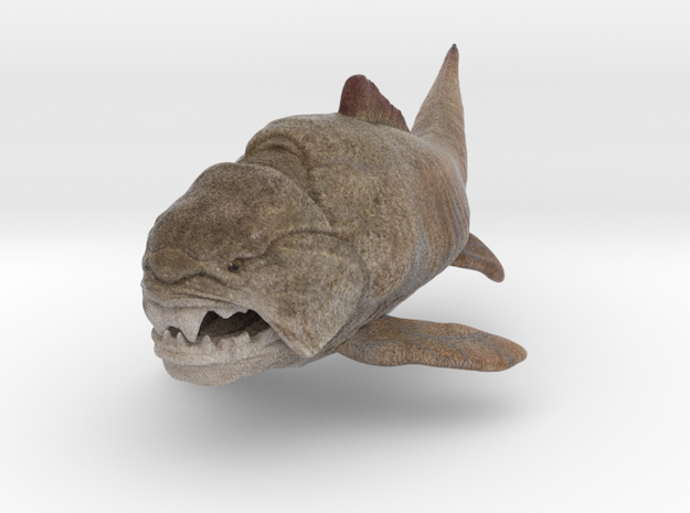 Dunkleosteus middle size(color)