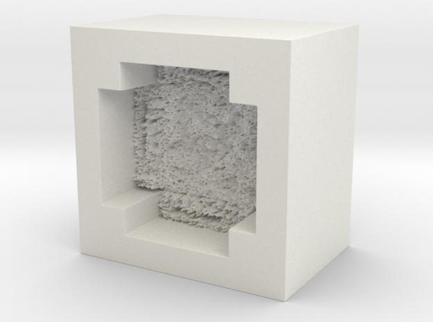 moemold00004 in White Natural Versatile Plastic