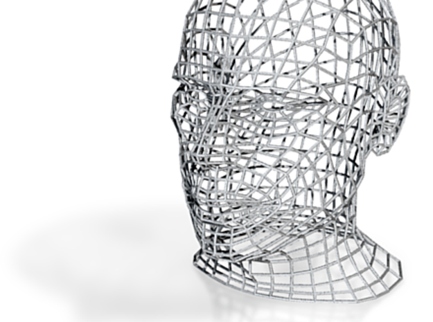 Wireframe Head Model 3d printed