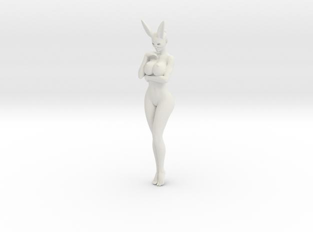 Bunny lady 005 1/10