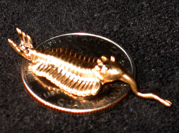 Opabinia - Small 3d printed Bronze