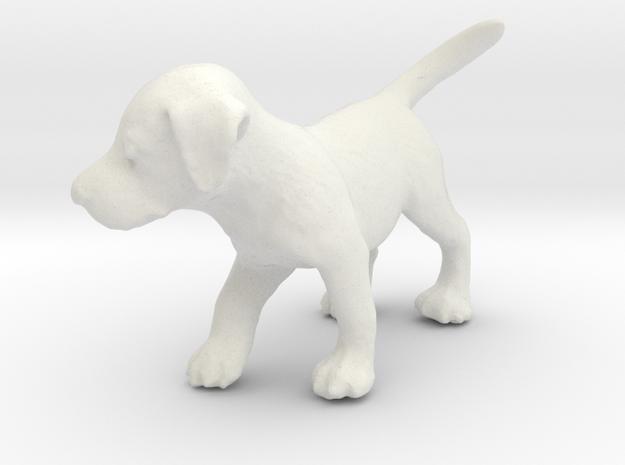 1/12 Puppy