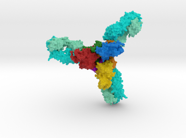 Ebola Glycoprotein with Antibodies in Full Color Sandstone