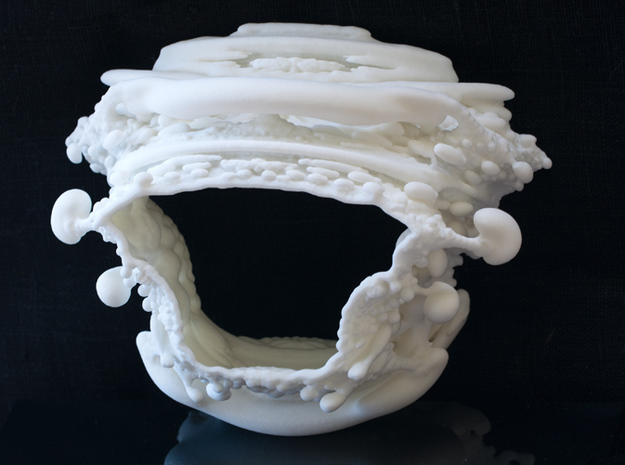 Slice of Spine - Two Vertebrae - Fractal Bracelet 3d printed