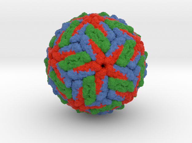 Dengue Virus (Small)