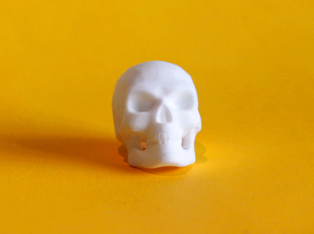 3D Printed Skull - Large in White Strong & Flexible Polished