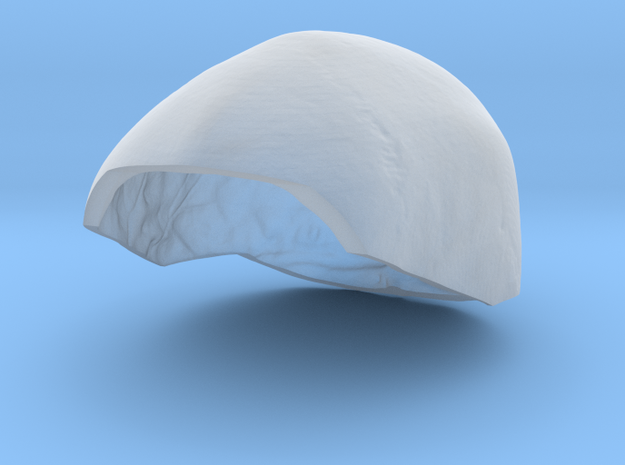Subject 5h | SkullCap in Smooth Fine Detail Plastic