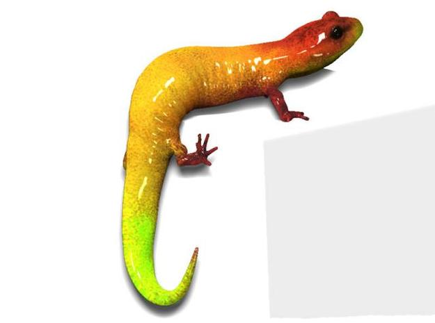 Salamander 6.4cm 3d printed Description