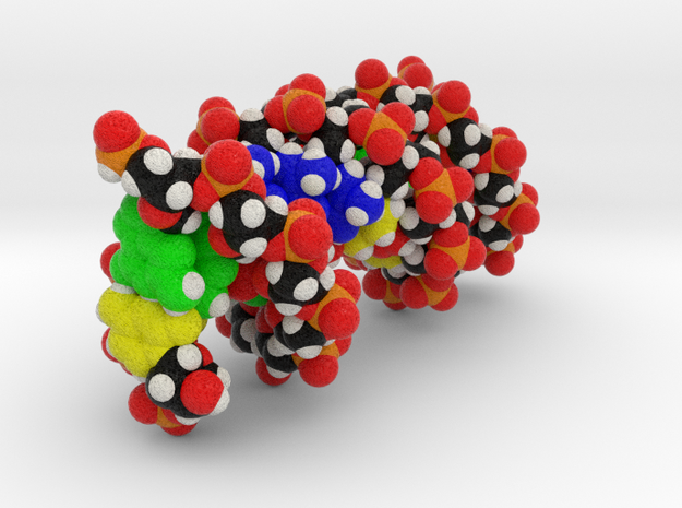 Custom DNA Molecule Model, Standard Size in Full Color Sandstone