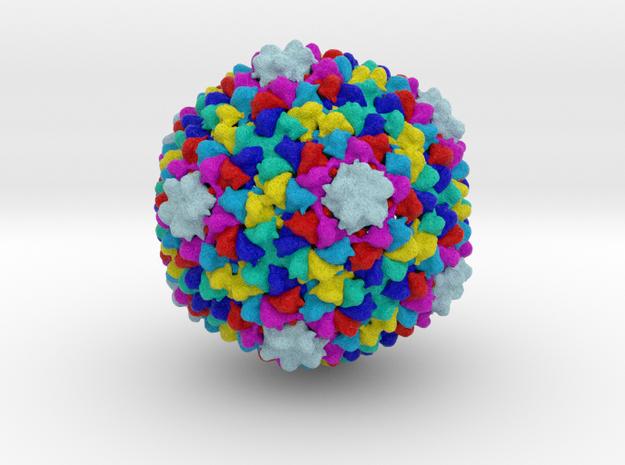 Enterobacteria Phage P22  in Full Color Sandstone
