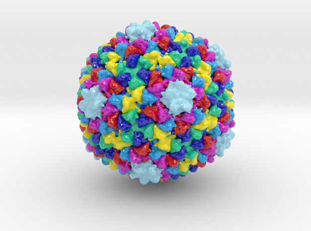 Bacteriophage P22 in Coated Full Color Sandstone