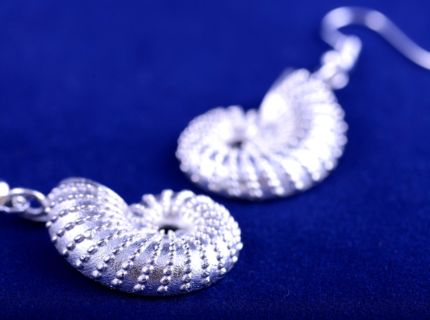Nautilus Shell Earrings 3d printed detail of surface texture