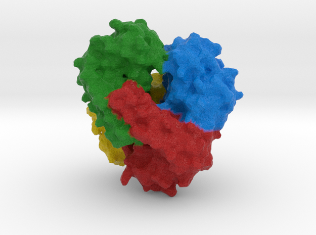 Superoxide Dismutase in Full Color Sandstone