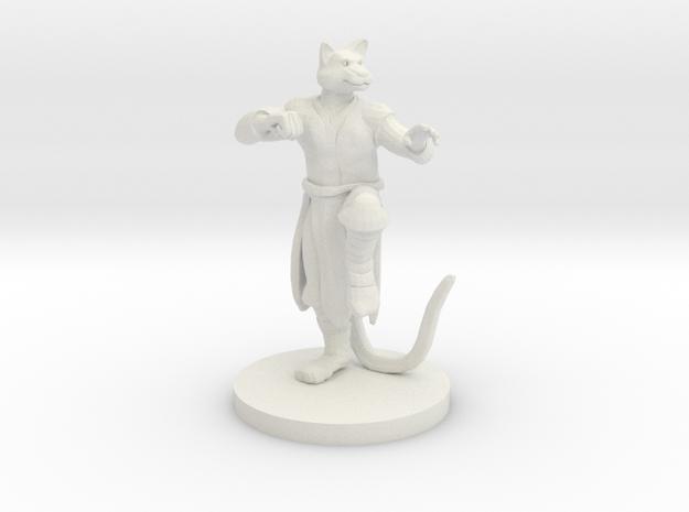 Catfolk Male Monk