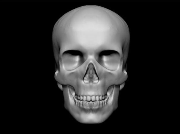 skull 3d printed Description