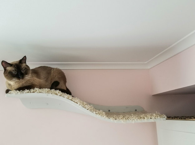 Wave of Cuteness Cat Shelf