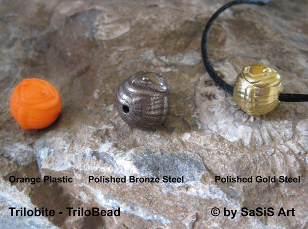 Trilo Bead Trilobite  in Orange Strong & Flexible Polished
