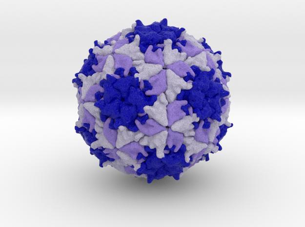 Mengovirus in Full Color Sandstone