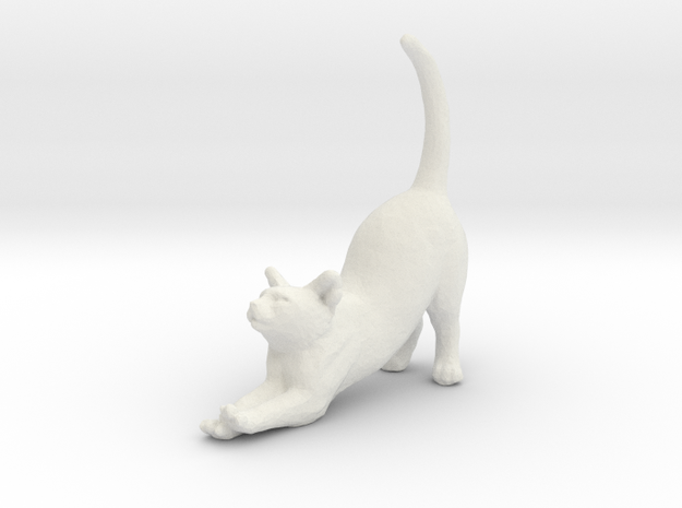 Printle Thing Cat 1/24