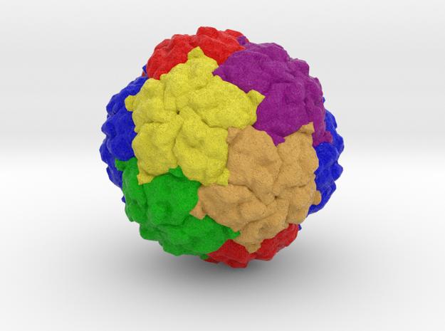 Penicillium chrysogenum Virus in Full Color Sandstone