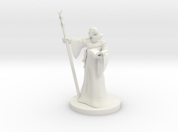 Elf Wizard 3