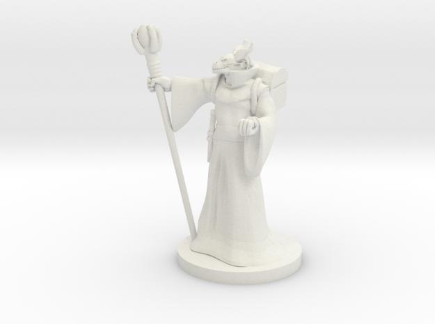 Dragonborn Sorceror v5 in White Natural Versatile Plastic