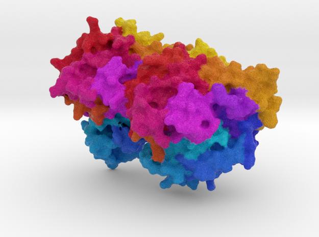 α-β Tubulin Dimer in Full Color Sandstone