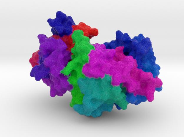 α1-Antitrypsin in Full Color Sandstone