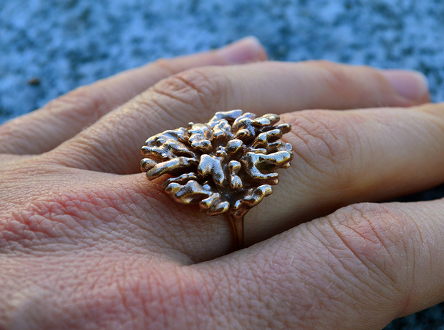Coral Ring I (differentail growth)