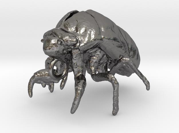Cicada Nymph Molt Pendant in Polished Nickel Steel