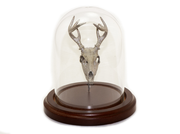 8-point white-tailed deer buck - 75 mm 3d printed Please contact me if you would like a bell jar display (camazine@comcast.net)