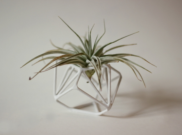 Ruba Rombic Edge Air Plant Vase in White Natural Versatile Plastic