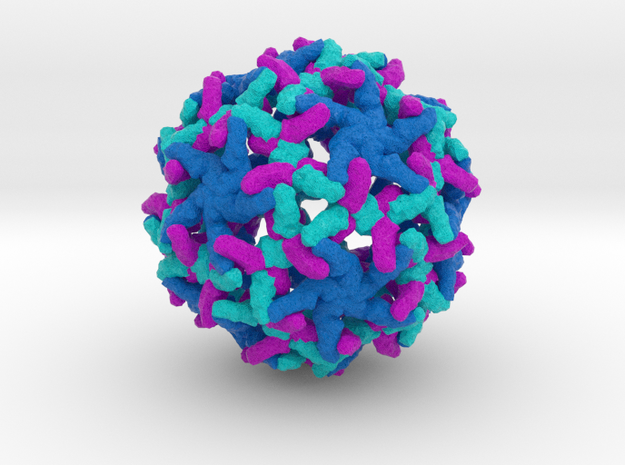 Yellow Fever Virus in Full Color Sandstone