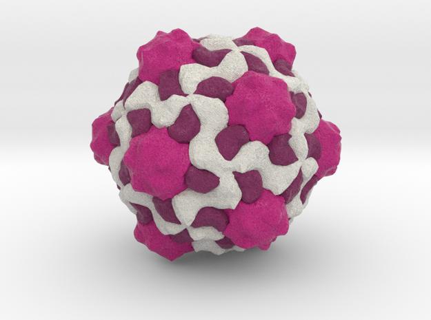 Cowpea Mosaic Virus in Full Color Sandstone