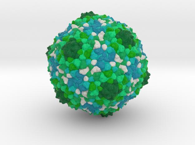 Staphylococcus aureus Phage 80α in Full Color Sandstone