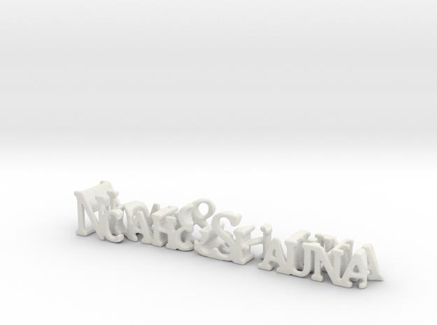 3dWordFlip: Noah&Shauna/Forever in White Natural Versatile Plastic