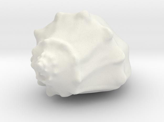 Whelk in White Natural Versatile Plastic