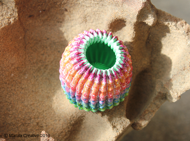 Brain Coral Jewellery Container