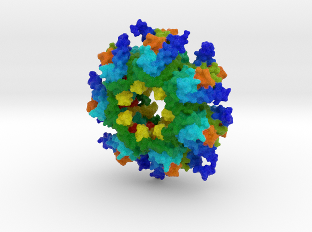 CaM Kinase II in Full Color Sandstone