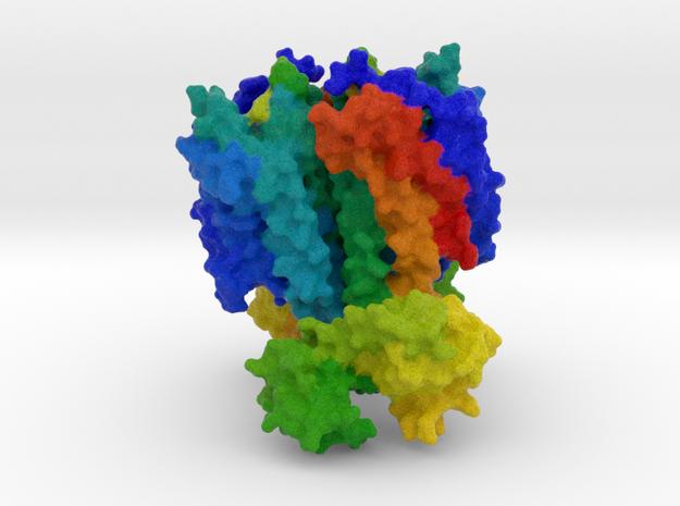 CXCR4 Chemokine Receptor in Full Color Sandstone