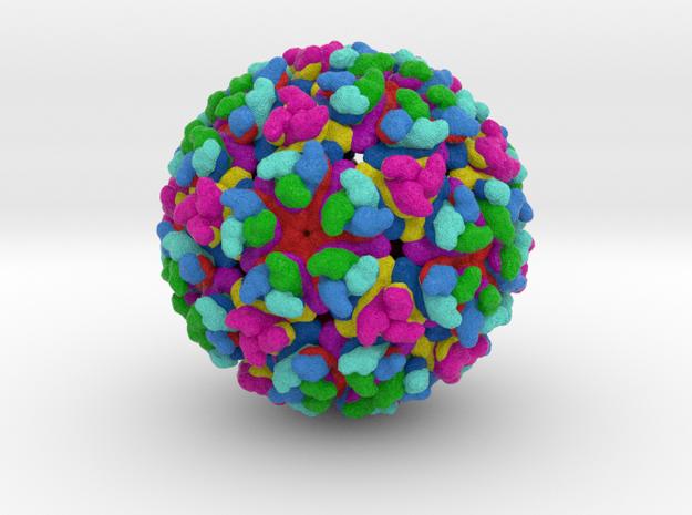 Chikungunya Virus in Full Color Sandstone