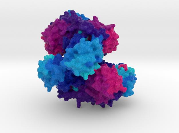 Homoserine Kinase in Full Color Sandstone