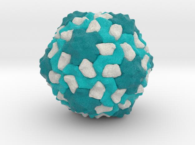 Southern Bean Mosaic Virus in Natural Full Color Sandstone