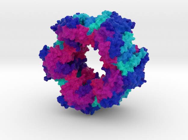 CRISPR Cas4 in Natural Full Color Sandstone