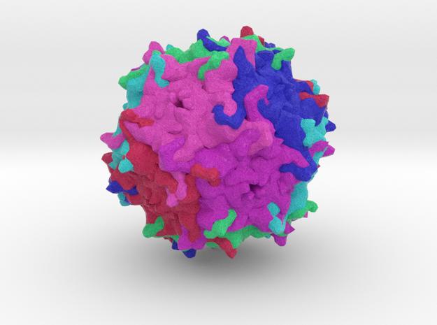 Gene Delivery Vector AAV2.5 in Natural Full Color Sandstone