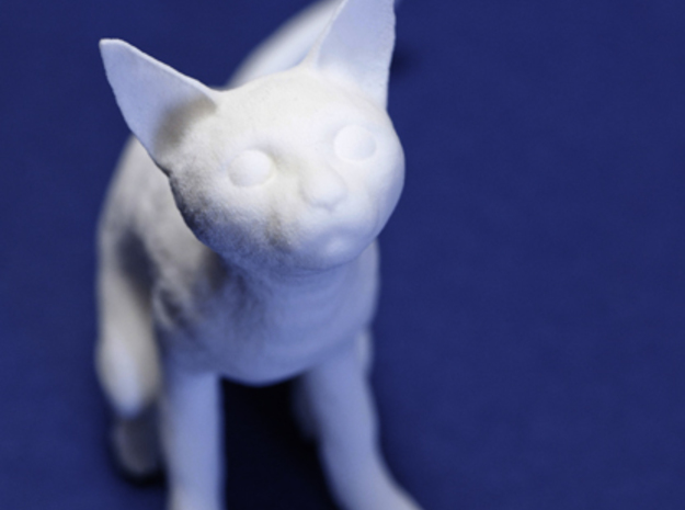 Cat 3d printed Cat lover