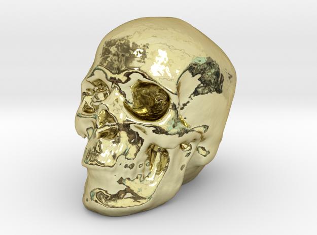 Skull 3DXS in 18k Gold Plated Brass