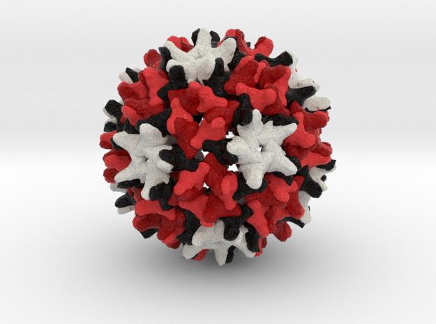 Hepatitis B in Natural Full Color Sandstone
